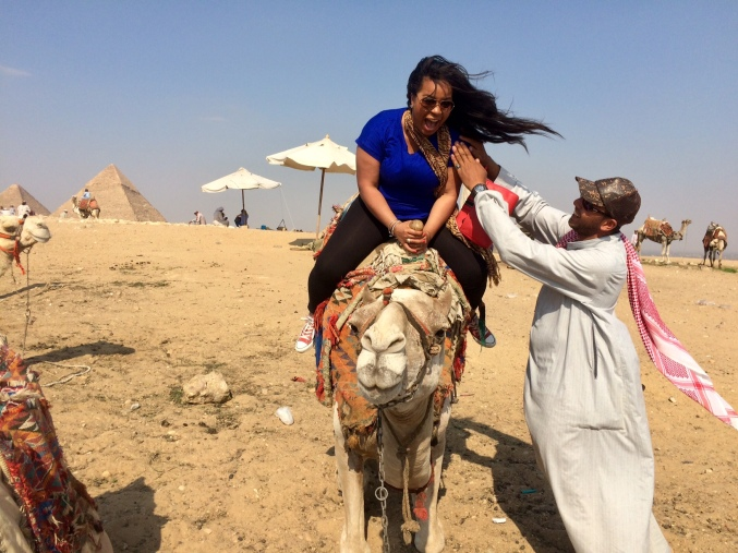 save me camel